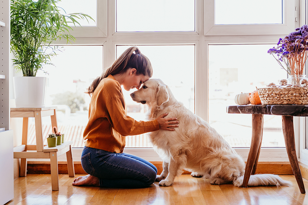 Honouring your best friend