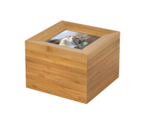 Tributes Box with pet photo